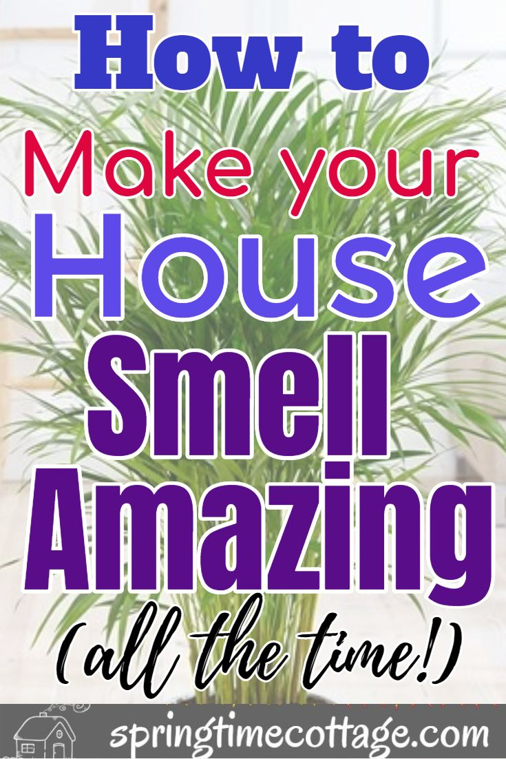 Smart Ways To Make Your Home Smell Wonderful House Smells House