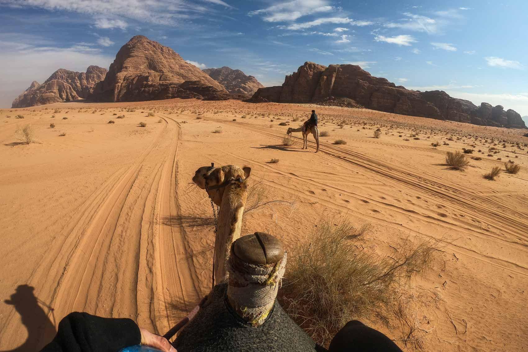 Um uns so richtig in das Wüstenleben einzufühlen, beschlossen wir, auf Kamelen…