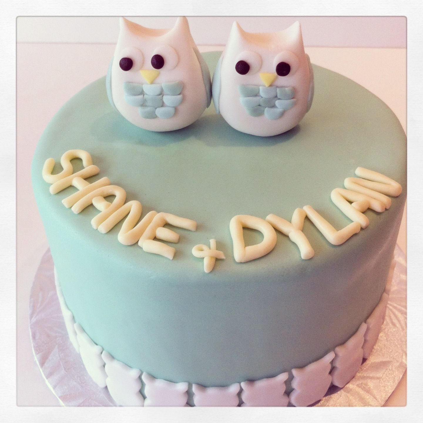 Owl Baby Shower cake for twins