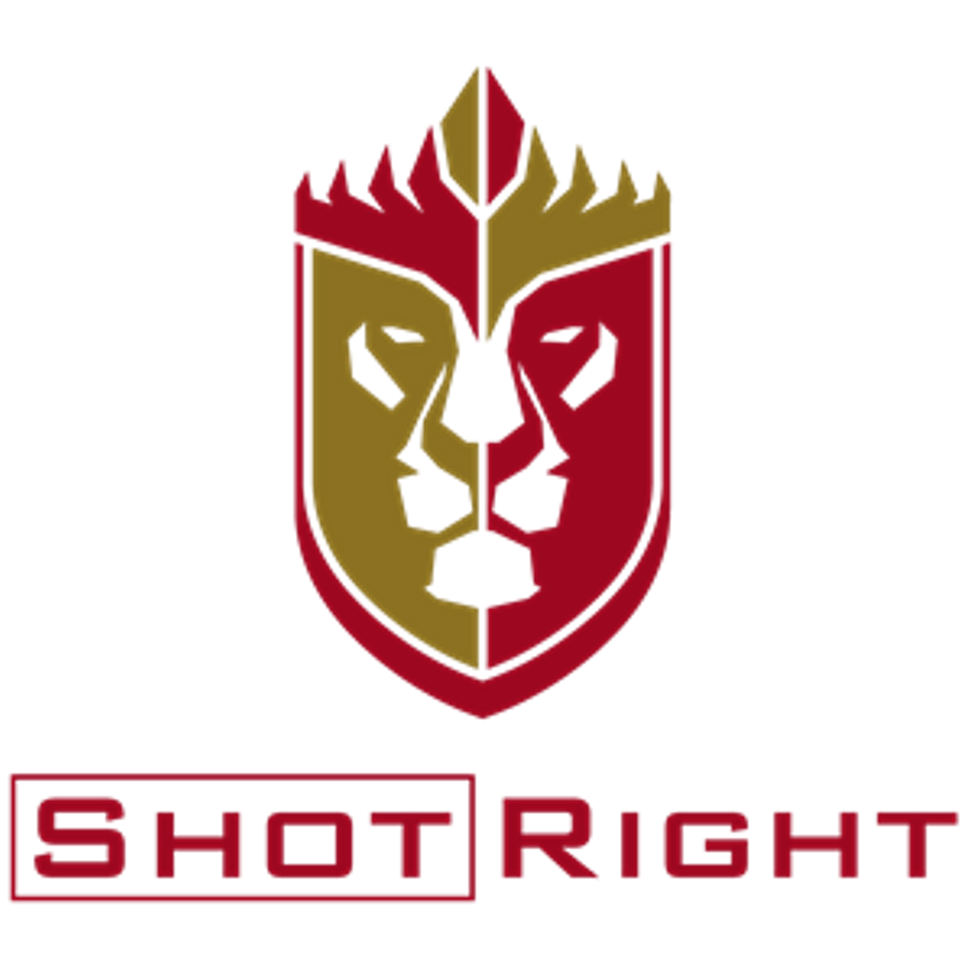 shot right training academy logo nra classes pinterest rh nz pinterest com nra logo download nera logistics