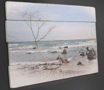 elbfischer design fotos auf holz drucken foto bild leinwand 20x20 preisvergleich bilder einer