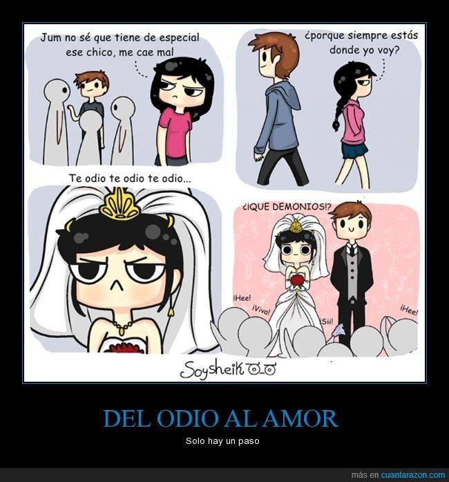 Del Odio Al Amor Solo Hay Un Paso Solo Hay Un Paso Memes Memes Humor Witze
