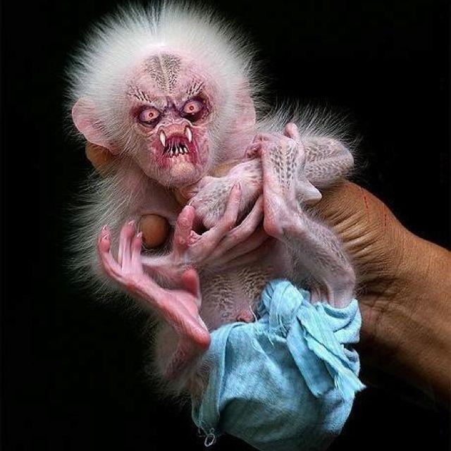 Scary monkey baby photoshopped, i hope!