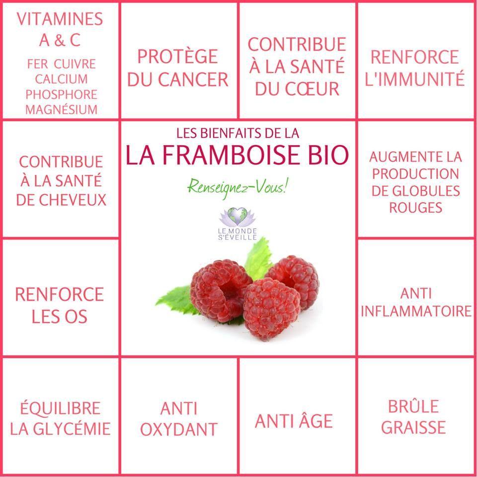 bienfait de la framboise bio Santé, Alimentation et