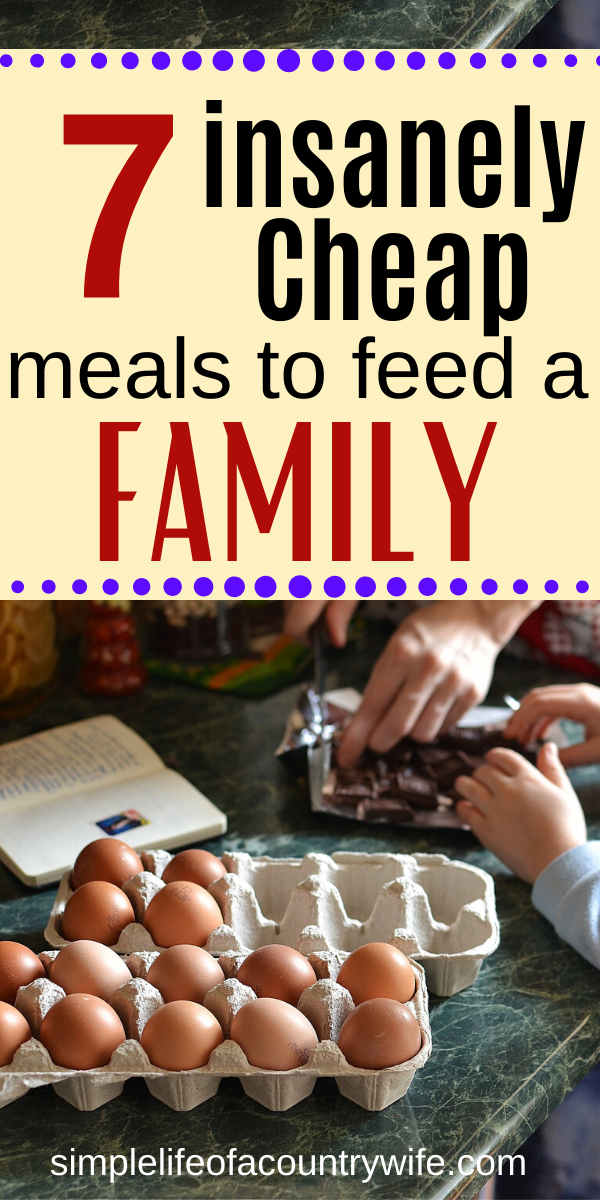 Do you need some dirt cheap meal ideas for your family?  When you have barely any money make these frugal meals.
