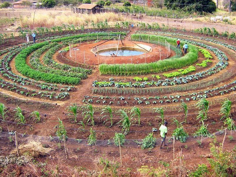Exceptionnel Permacultura: Um estilo de vida por um mundo melhor | HORTA  TW16