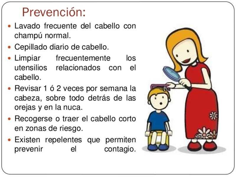 En Temporada De Calor Aumentan Los Casos De Ninos Infectados Por Piojos Imss Higiene Personal Ninos Piojos Prevenir Piojos
