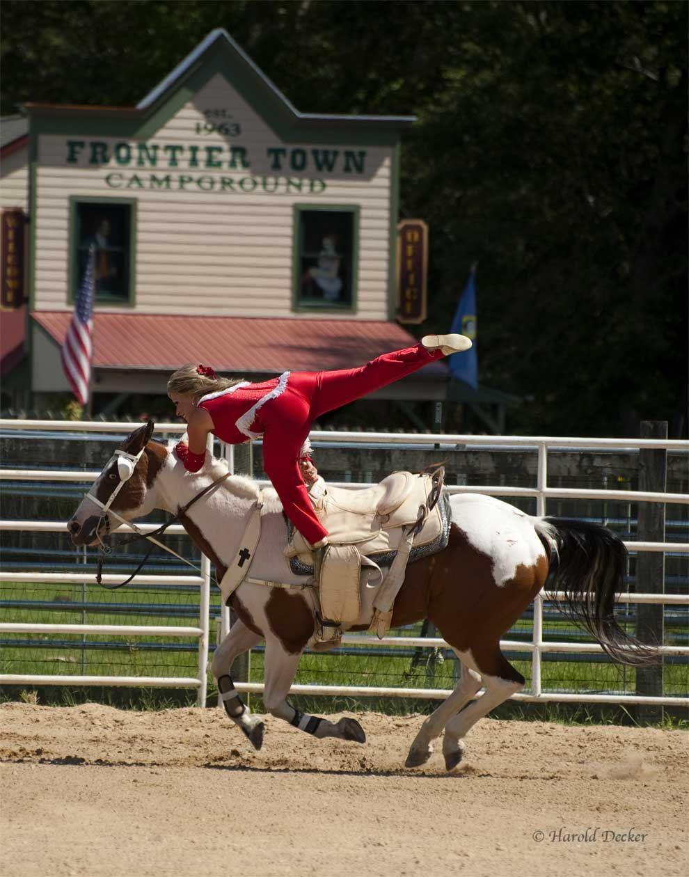 how to train a horse to do tricks