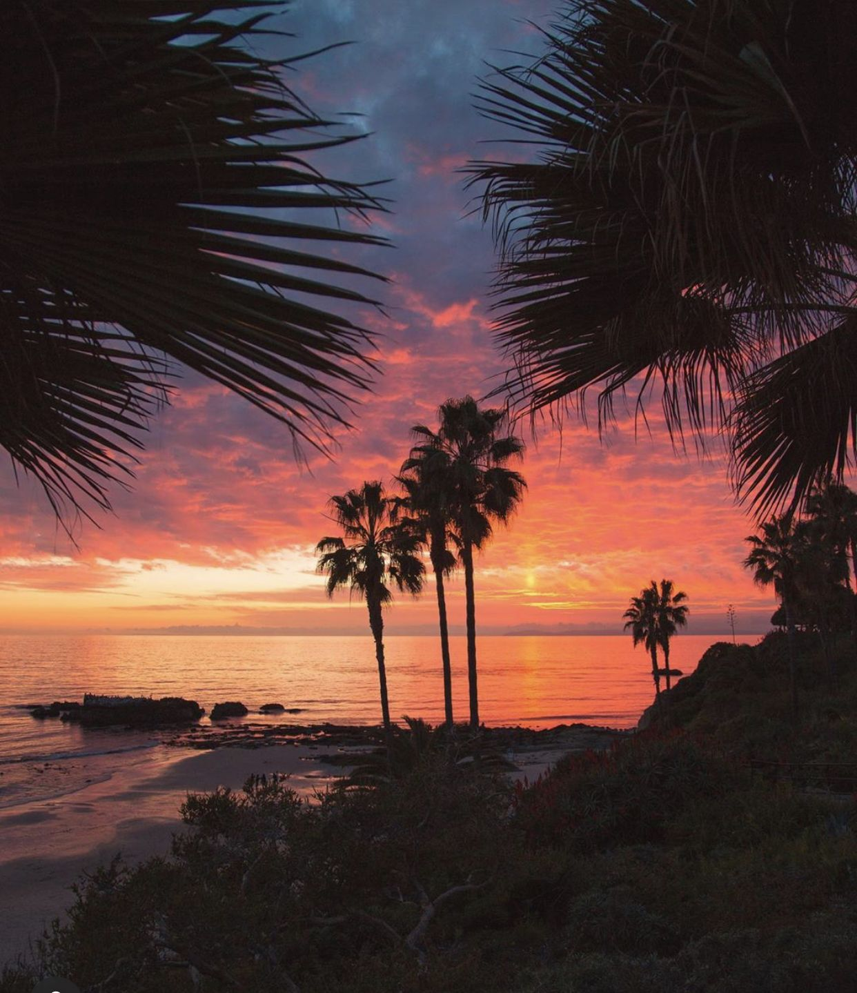 I Love Ca Favorite Pic Beautiful Perfection Instagram Photo La Things To Do
