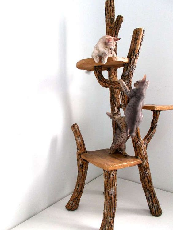 Arbre chat design et rustique chat pinterest rustique chats et design - Arbre a chat bois naturel ...