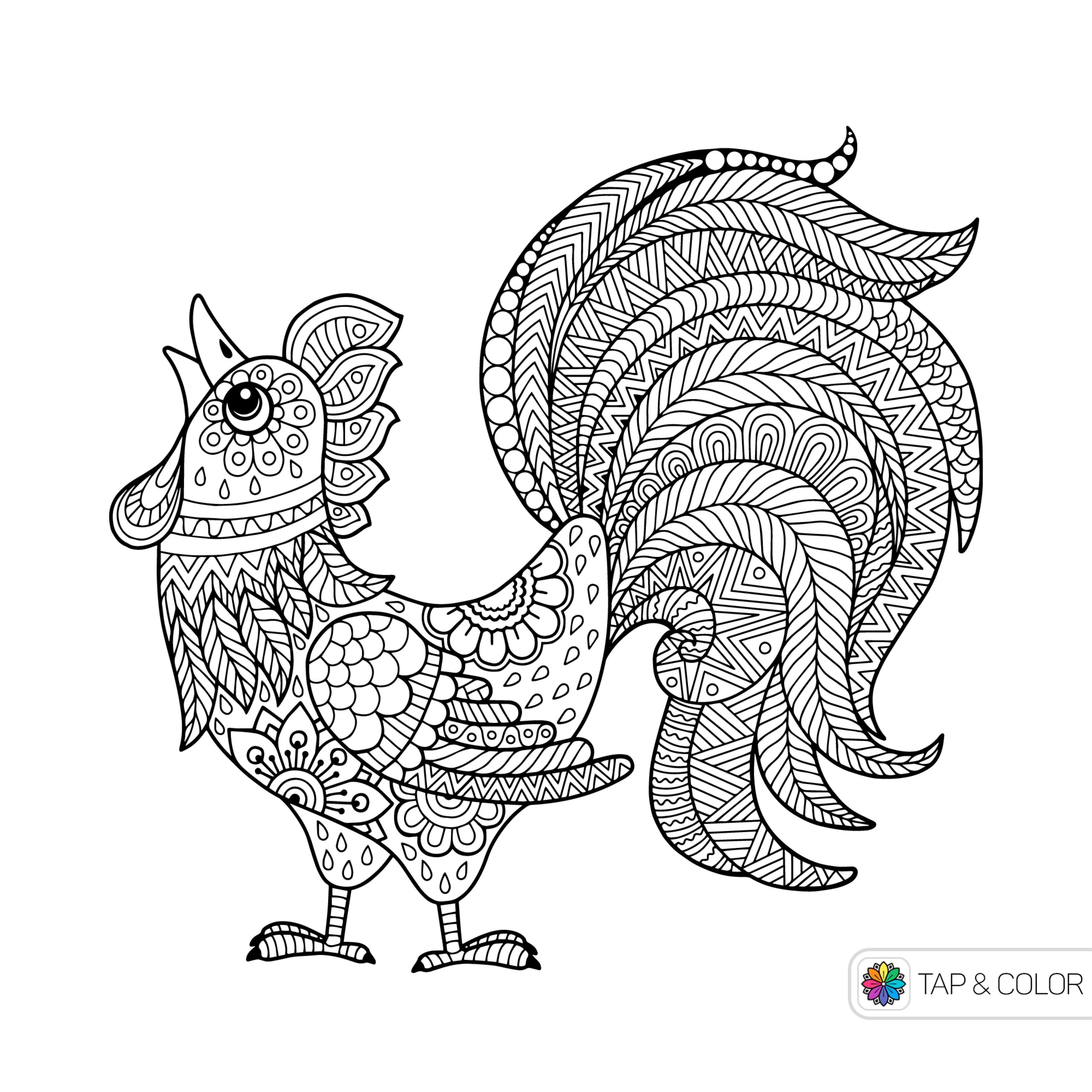 Top Result 50 Lovely Doodle 4 Google Template Gallery 2017 Hht5 2017 ...