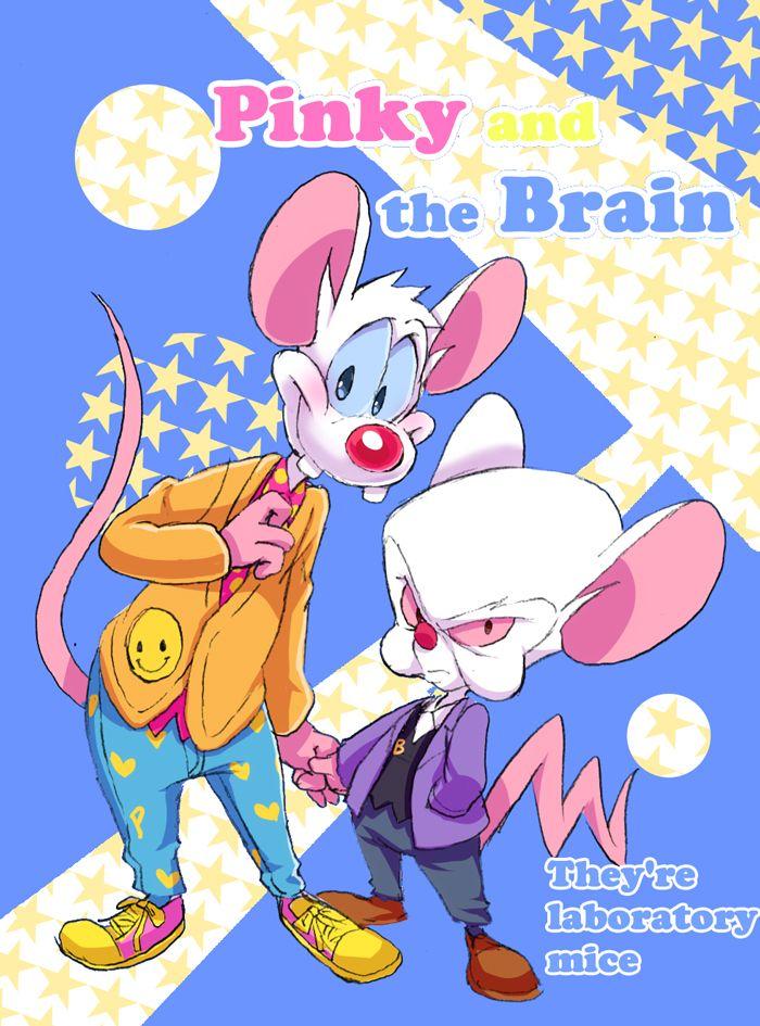 Pinky and the Brain3 by Natsu-Nori on DeviantArt