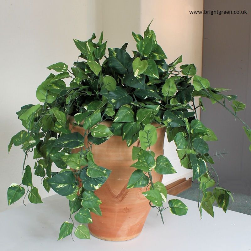 Artificial Pothos In A Tall Terracotta Urn Artificial Plants Indoor Artificial Plants Decor Artificial Plants