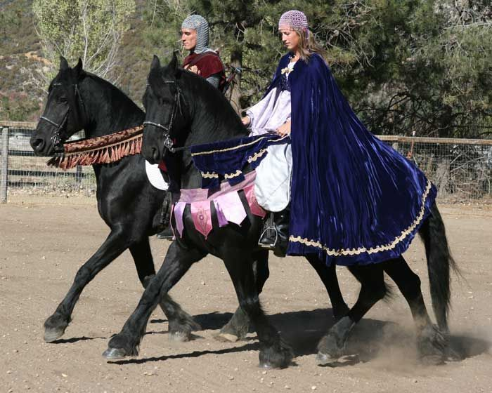 Medieval princess friesians - Google Search  sc 1 st  Pinterest & Medieval princess friesians - Google Search | horse costume ideas ...