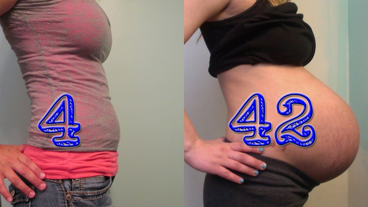 Baby Belly Progression: 4 to 42 Weeks - Huge Pregnant Belly