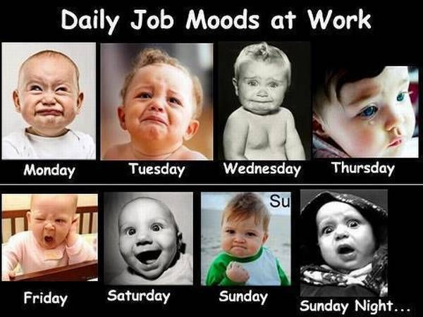Funny Faces Of Office Life More Funny Photos Http Www