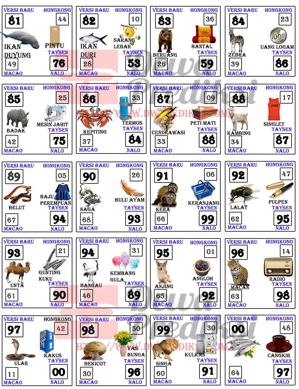 Kelelawar Masuk Rumah Menurut Islam : kelelawar, masuk, rumah, menurut, islam, Mimpi, Kelelawar, Masuk, Rumah, Sampai, Digigit, Cute766