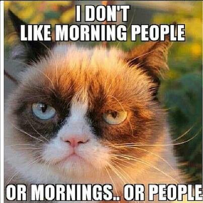 Grumpy Cat on morning people...