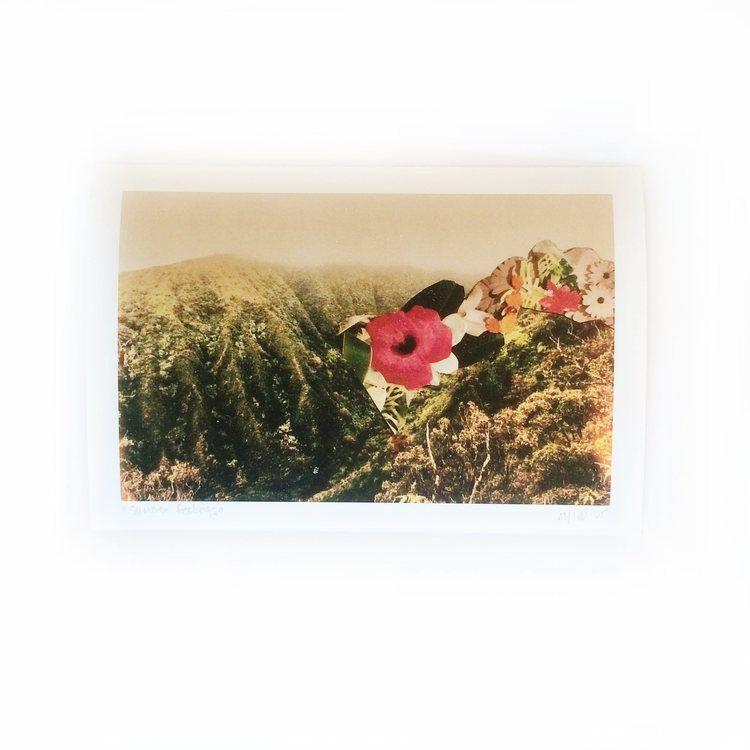 Summer Feelings #summer #hawaii #maui #collage #art #mountains #flowers #wildflower