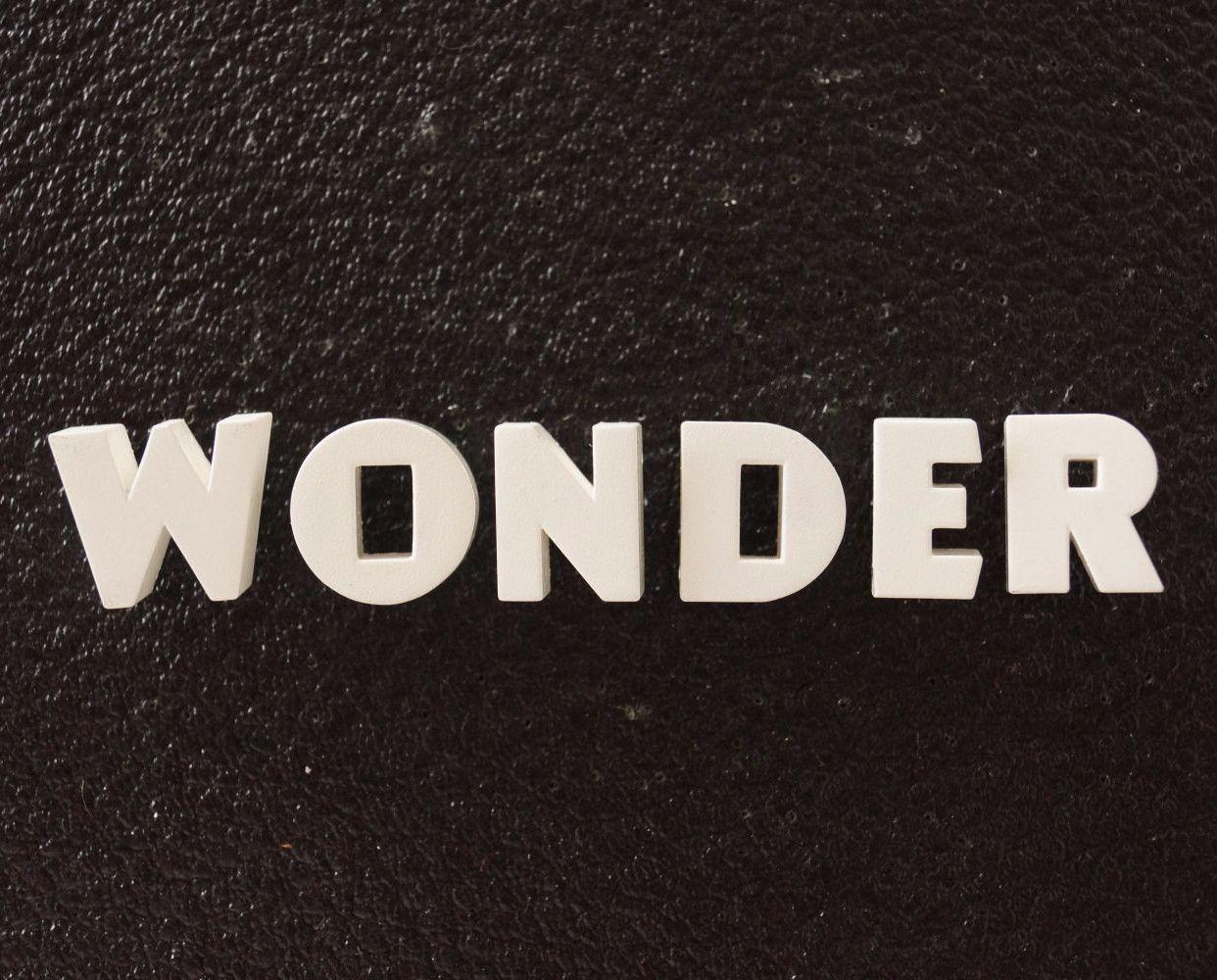 "Vintage White Ceramic Push Pins ""WONDER"" (c.1940s)"