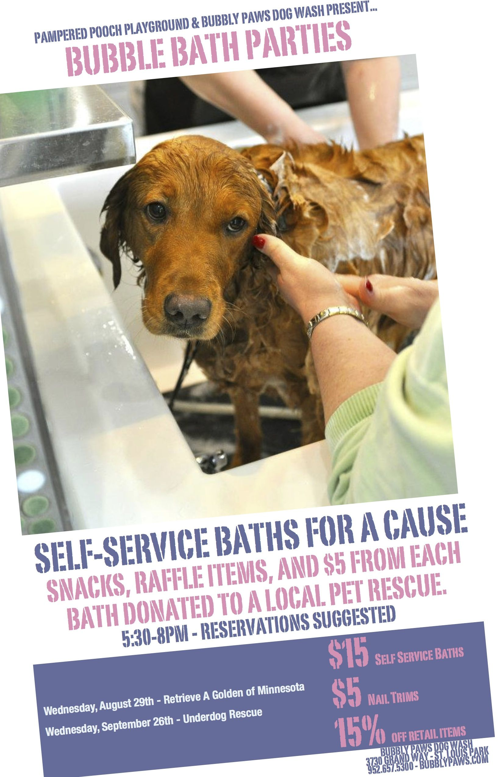 Bubbly paws dog wash minneapolis mn guess who this is in the bubbly paws dog wash minneapolis mn guess who this is in the poster solutioingenieria Gallery