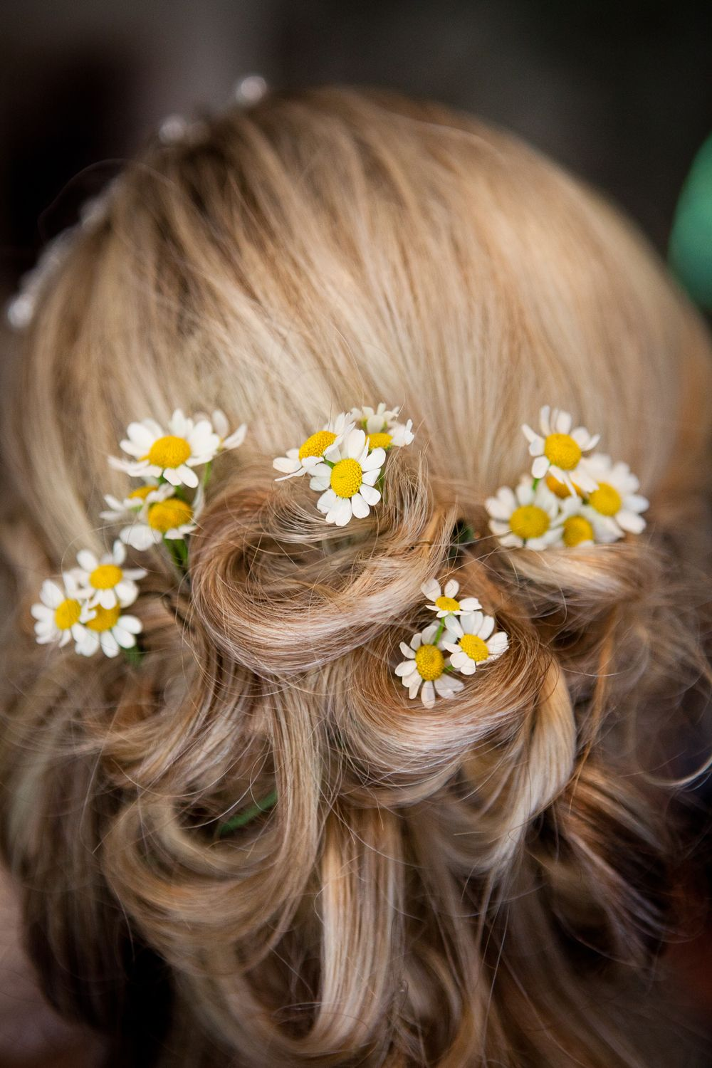 These are exactly the kind of flowers i want in my hair zs