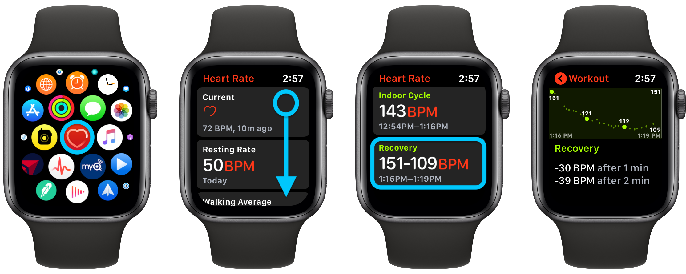 Apple Watch How to see heart rate recovery and what is it