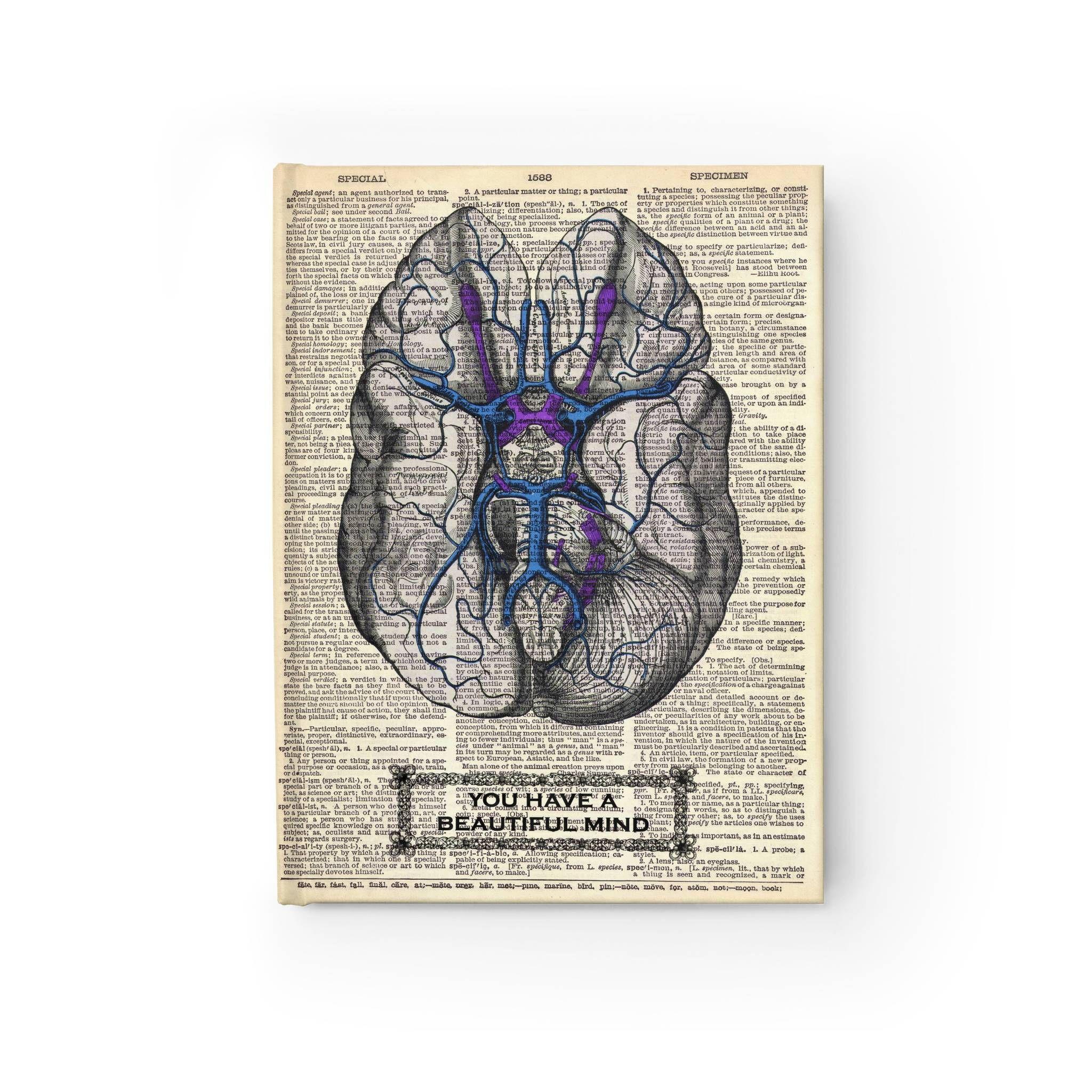 Gro Human Anatomy Journals Galerie Anatomie Ideen Finottifo