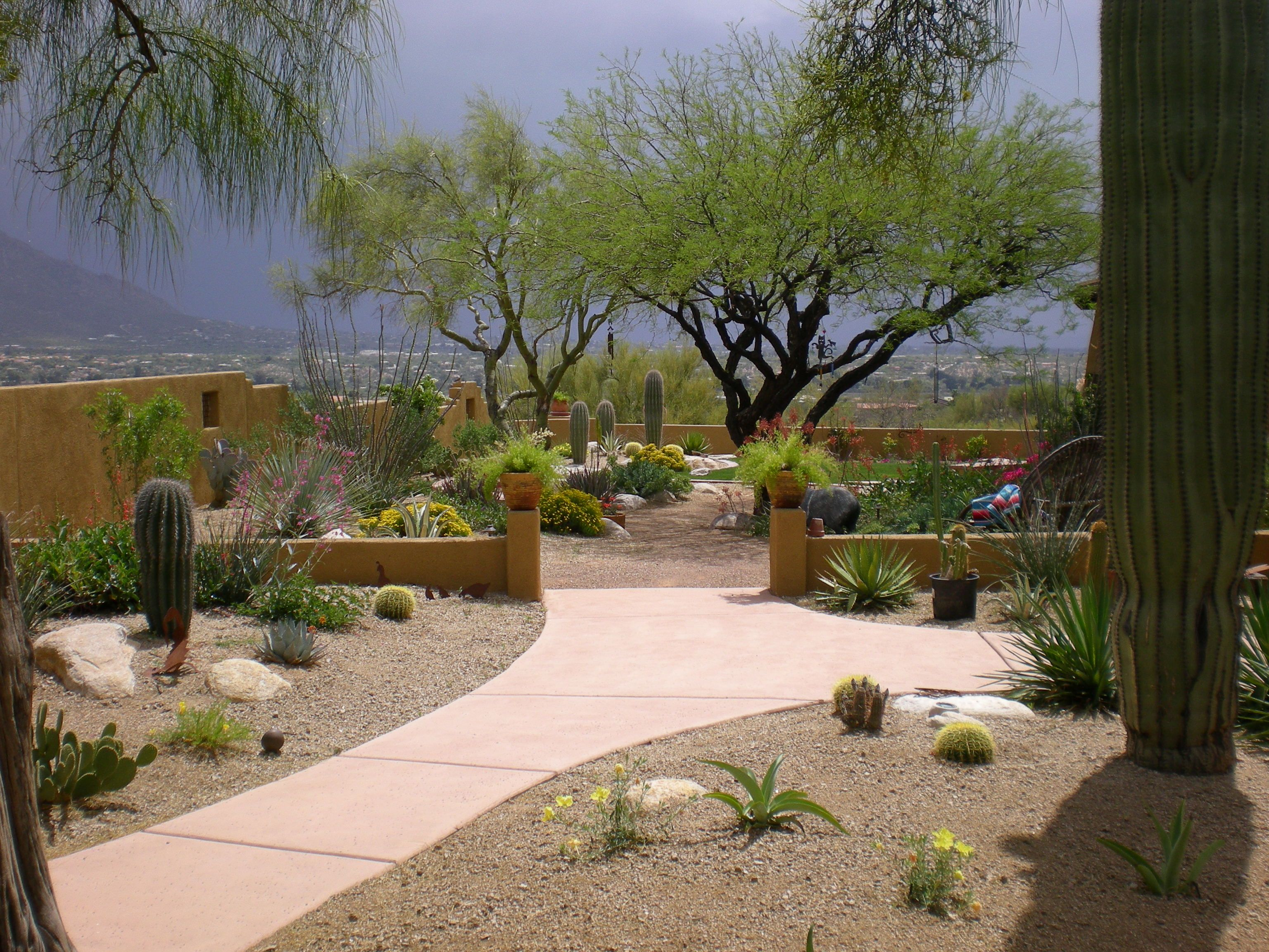 rustic desert landscaping tucson