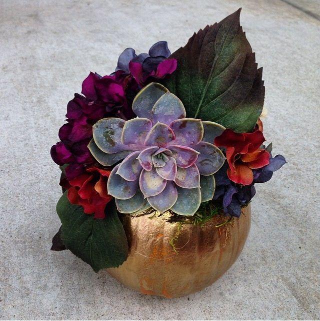 Succulent & hydrangea pumpkin centerpiece for thanksgiving