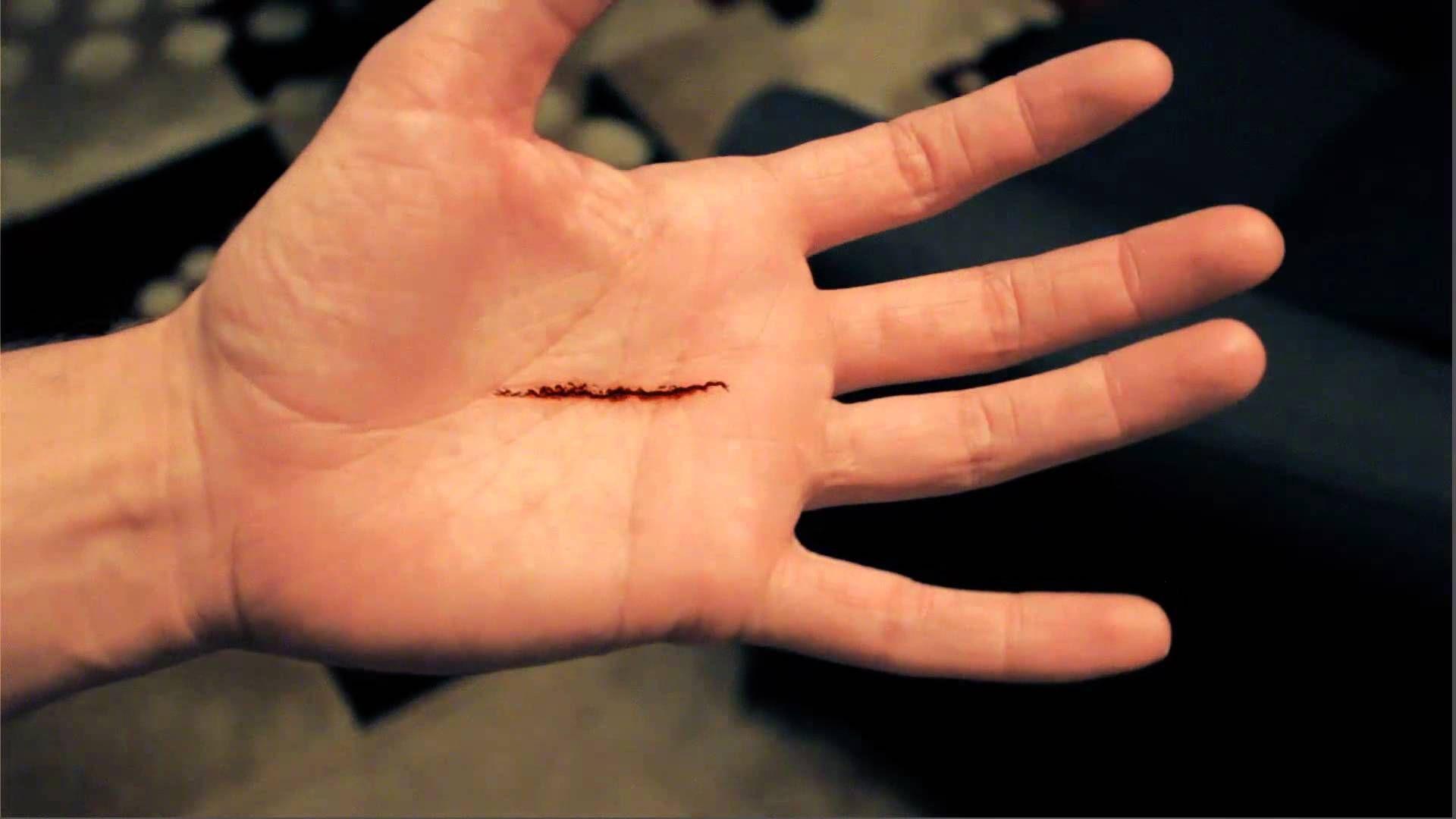تفسير حلم قطع يد كف اليد اليسرى موسوعة Leaf Tattoos Maple Leaf Tattoo Tattoos