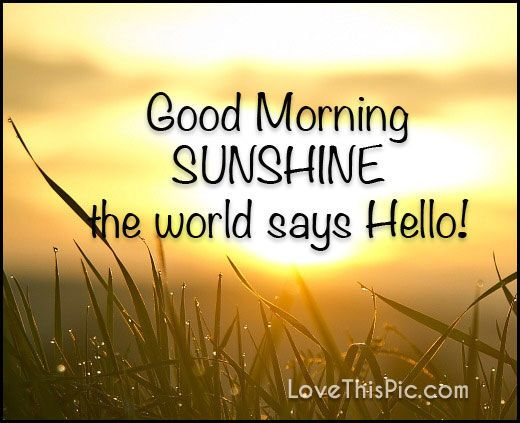 Good Morning Sunshine Quotes: Good Morning! The Early Bird Catches The Worm! Rise And