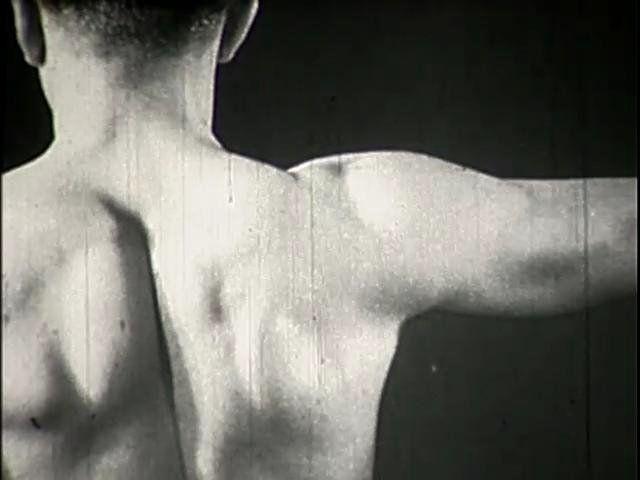 Reichsstelle für den Unterrichtsfilm 1937  Dieser film von Prof. Dr. Robert Janker zeigt Röntgenaufnahmen von Bewegungen des schultergürtels und des Oberarmes beim lebenden Menschen. Diese Aufnahmen bringen die Gestalt des Schlüsselbeines, des Schulterblattes und des Oberarmes, ihre Lage zueinander und zum Brustkorb, sowie ihr Zusammenwirken bei zahlreichen Bewegungen zur Anschauung. Ferner sind in den Röntgenaufnahmen die Umrisse des dargestellten ...