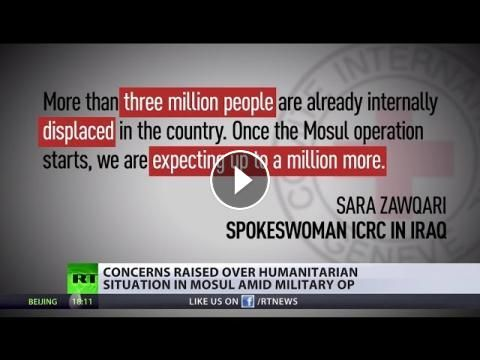 'Europe is a sitting target for jihadists feeling Middle East' – Janice Atkinson: The Red Cross said the operation in Mosul will create up…