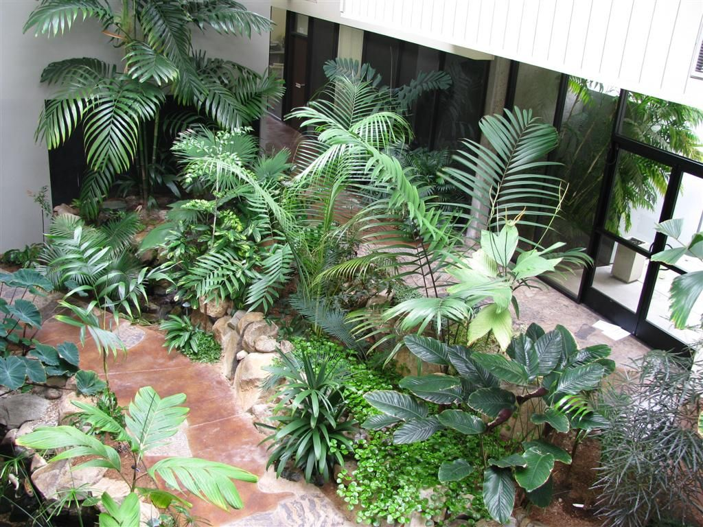 Interior outdoor indoor plants decoration creating an for Planta tropical interior