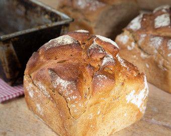 Brote Archiv Backerei Harms Backtradition Seit 1898 Lebensmittel Essen Brot Backerei
