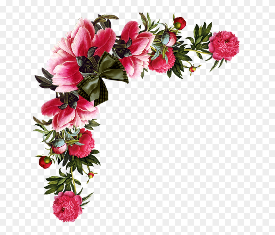 Red Flower Border Png