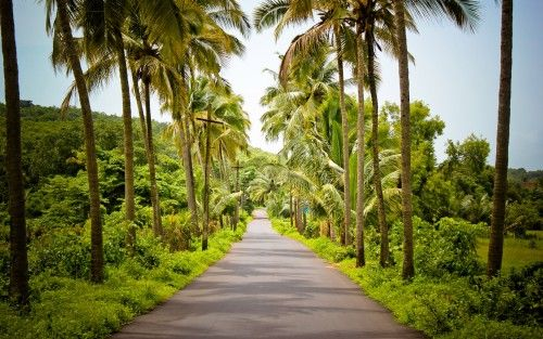 High Resolution Hd Nature Images Of India Beautiful Street In Village Hd Wallpapers Wallpapers Download High Resolution Wallpapers Nature Pictures Amazing Nature Photos Nature Images