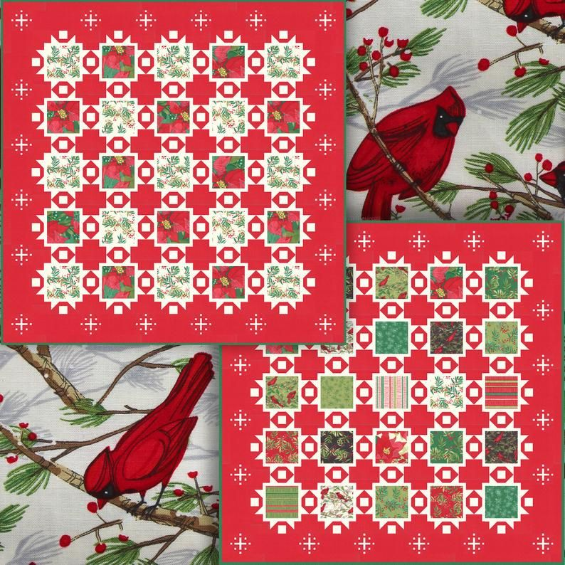 Joy and delight printed quilt pattern by robin pickens