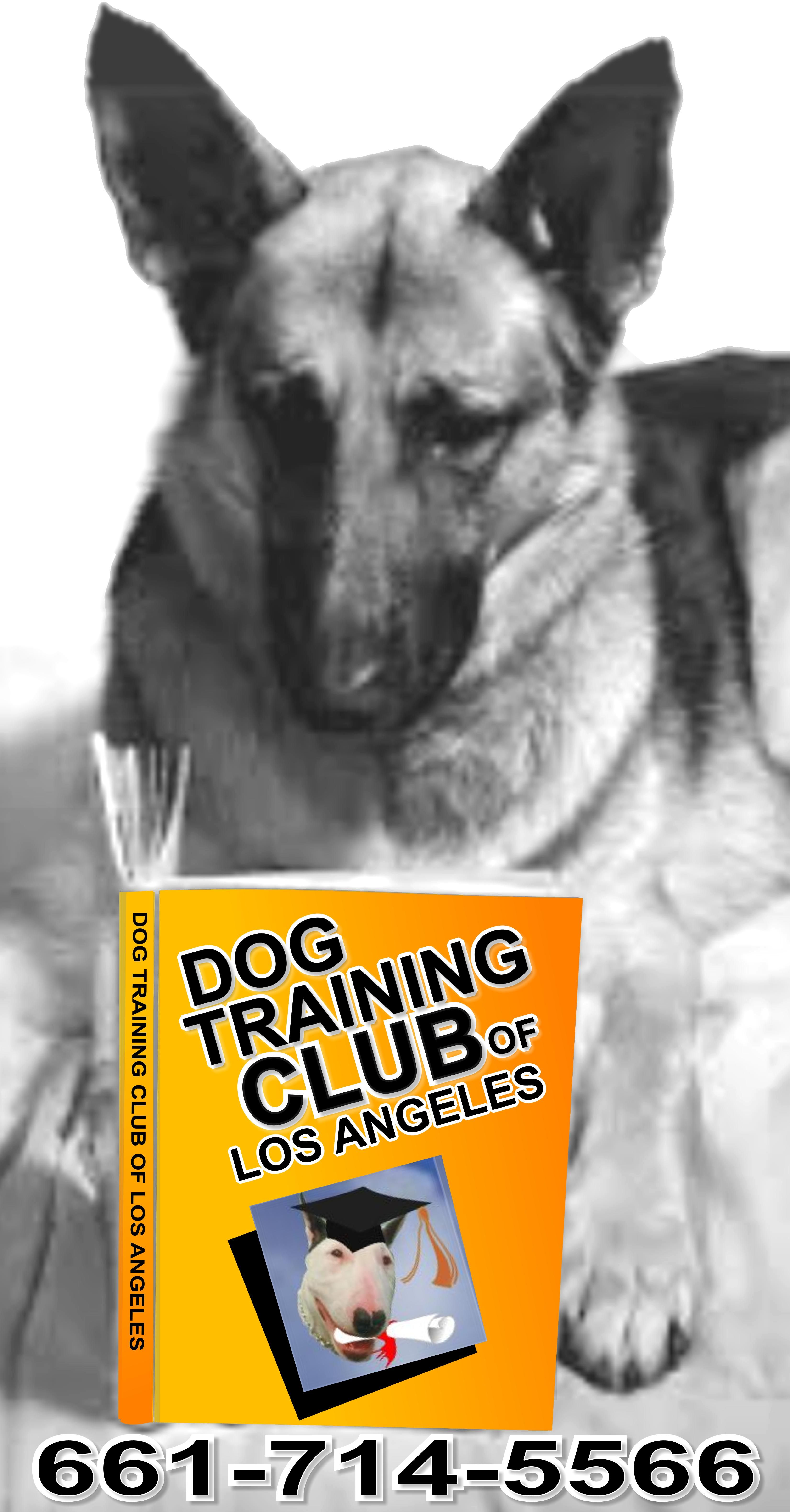 Great Reading Material At Dog Training Club Of Los Angeles Dog