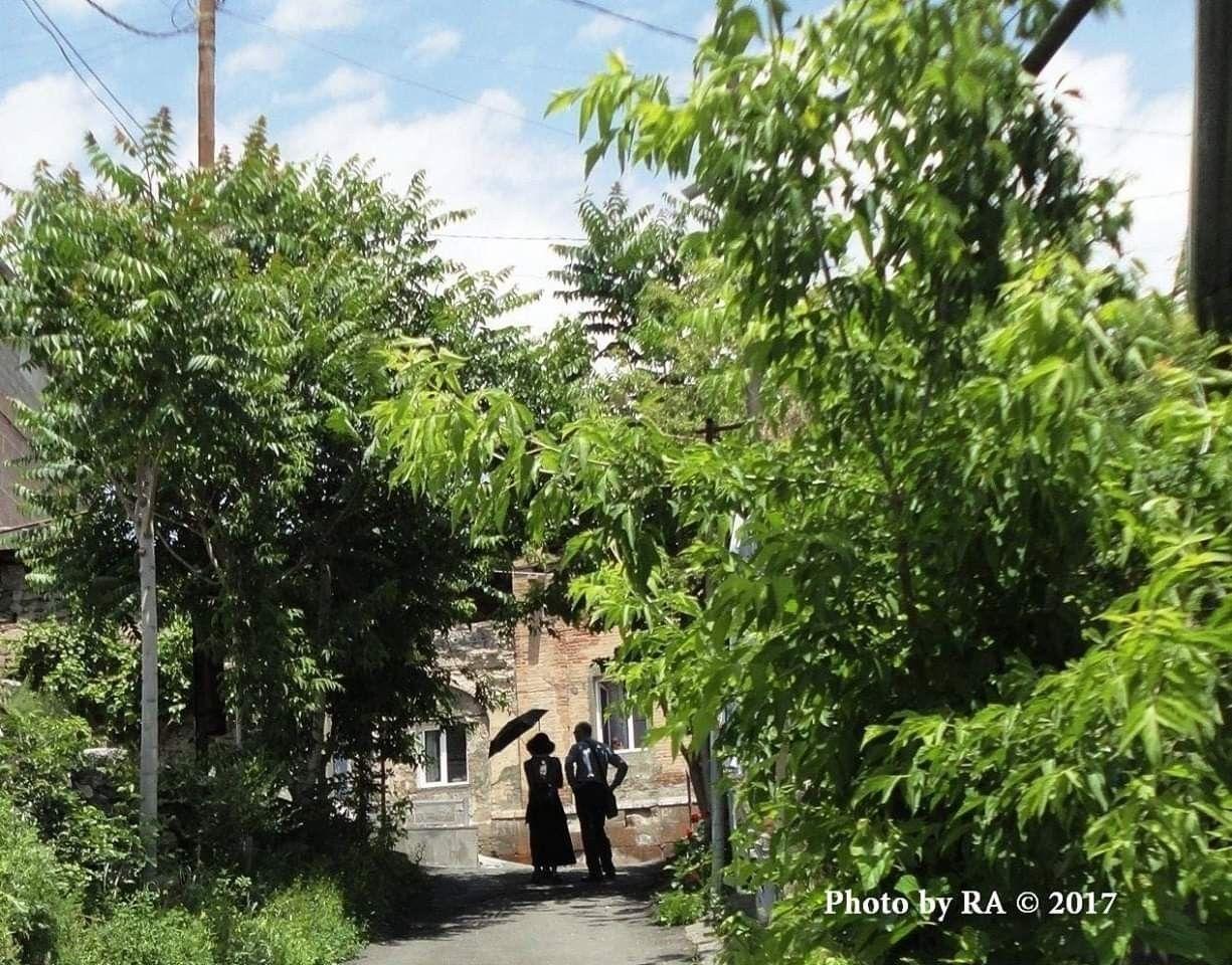 Old Yerevan Kond With Images Yerevan Plants Garden