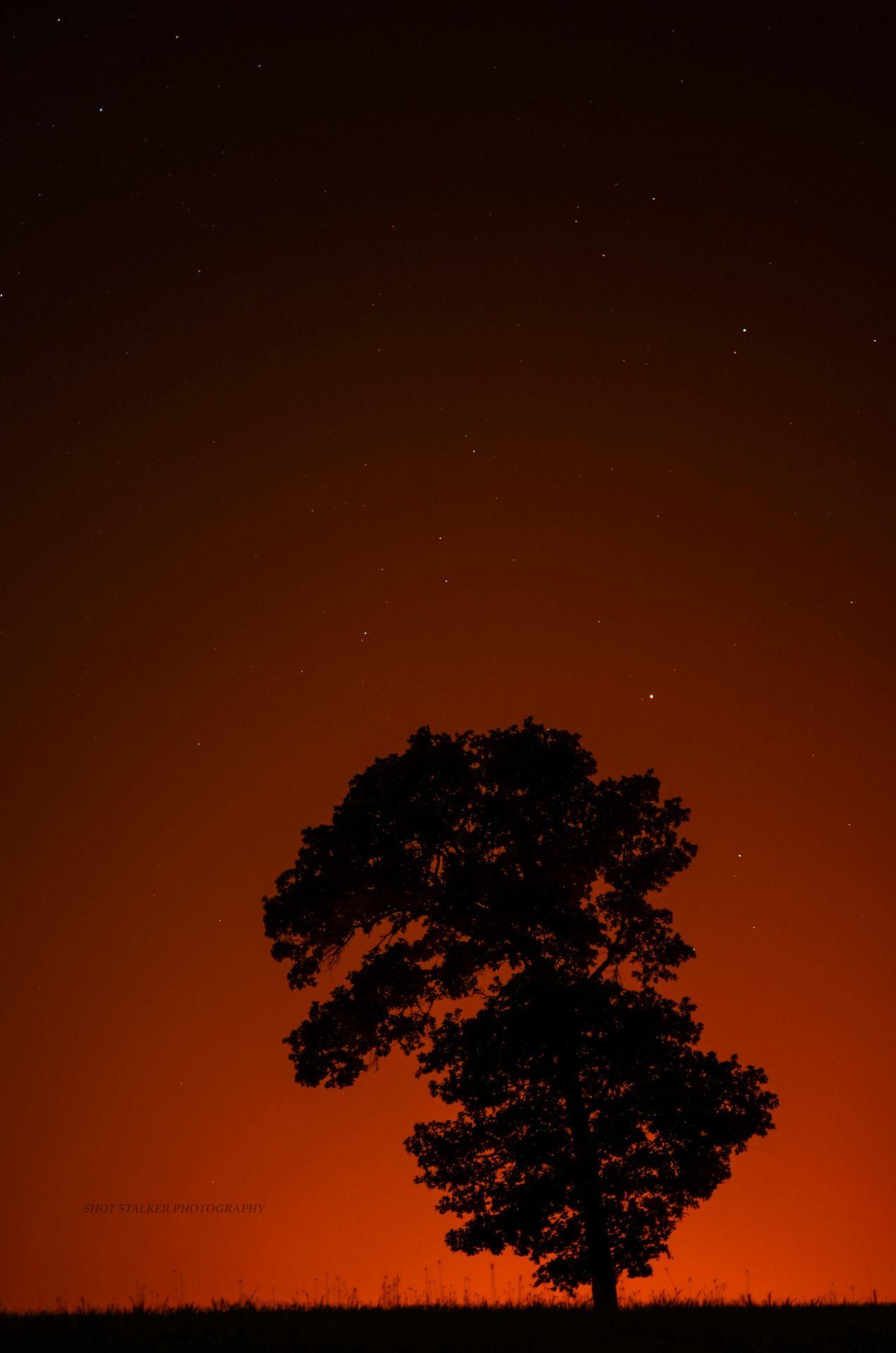 Nuclear Nature (via Shot Stalker Photography)