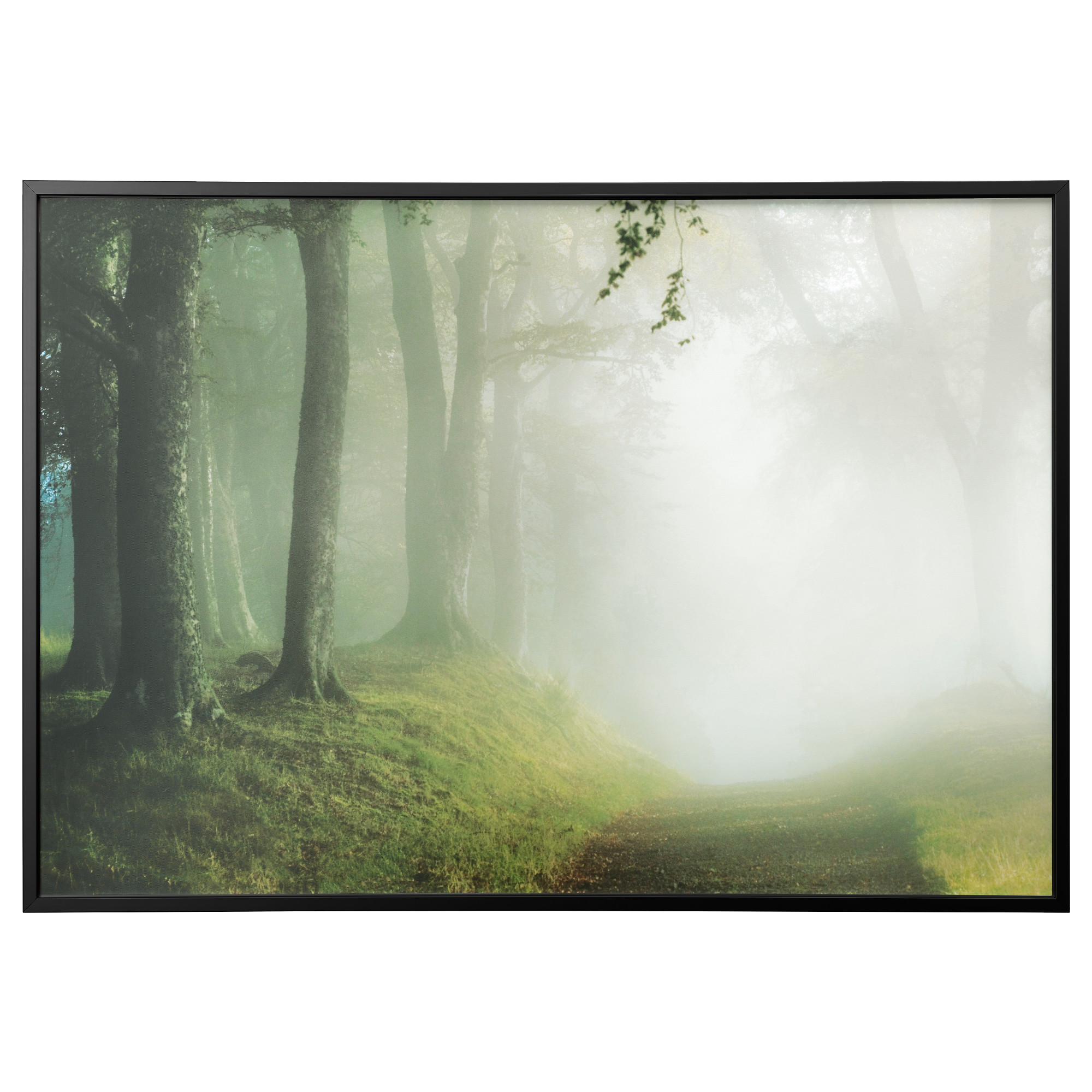 IKEA - BJÖRKSTA Picture and frame woodland way, black | Alice in ...