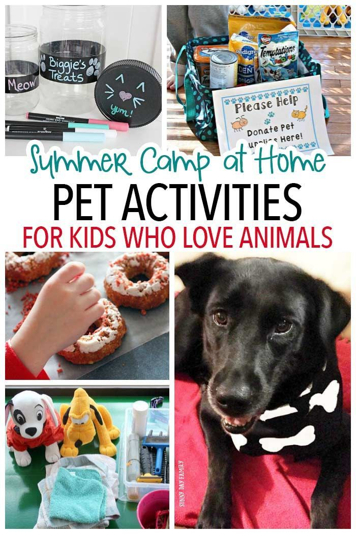 Pet Activities For Kids Who Love Animals Summer Camp At Home Activities For Kids Animals For Kids Dog Crafts