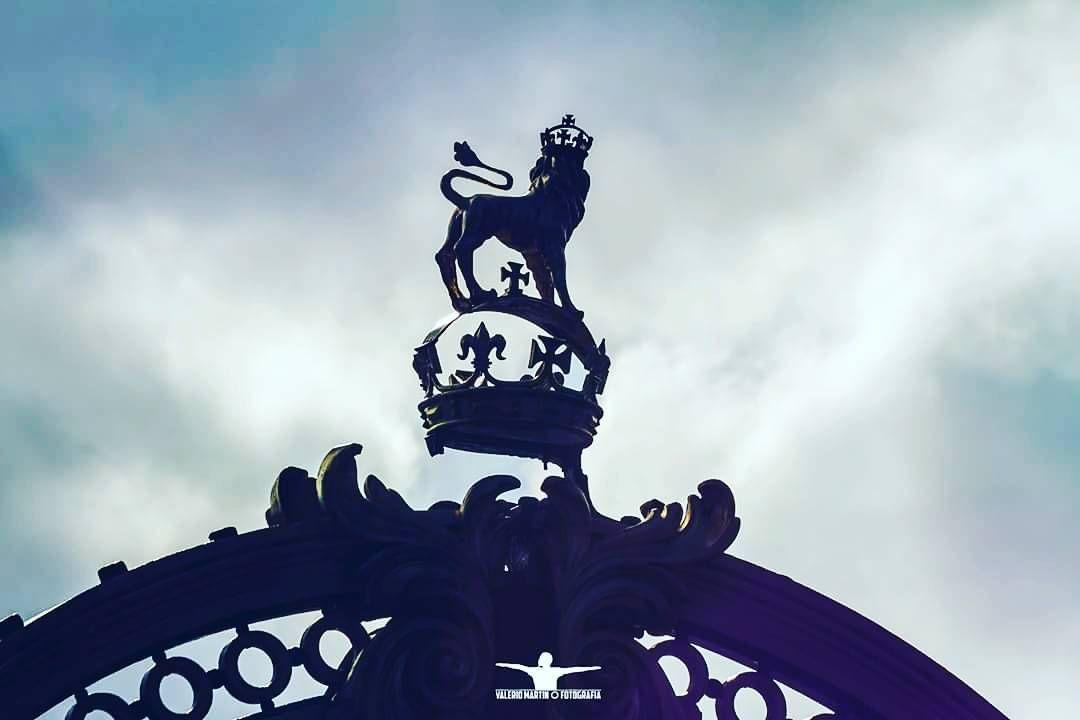 Taking a ride in London photos by @silviovalerios_photo from the #serievaleriomartin and #Silvioxlondres #London #explorer #explore #UK #trips #travels #travel #street #lion #traveler #trafic #fotosdeviajes #travelphotos #world #gtf #europe #tips #londoncity #buckinghampalace #oldeurope #tower #londres #visittolondon #toplondon #timeoutinlondon #takingaride by travelervaleriomartin