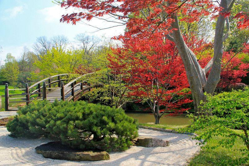 Missouri Botanical Gardens Cool Pictures Pinterest Missouri