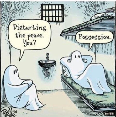 This Is Hysterical Halloween Jokes Funny Ghost Funny Cartoons