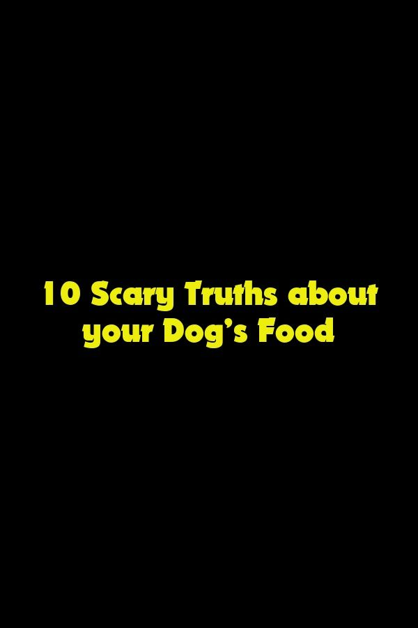 10 Scary Truths About Your Dog's Food