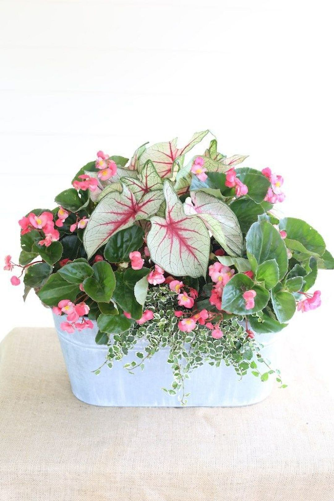 Outstanding 33 Beautiful Container Gardening Flowers Ideas For Your
