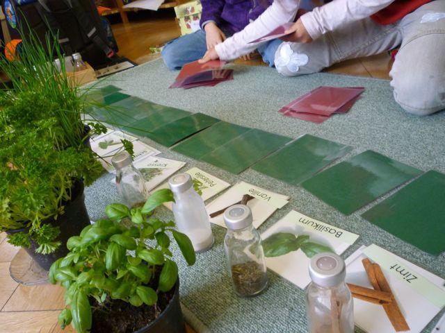 Kräuter Definitionsmaterial | Montessori Schule ...